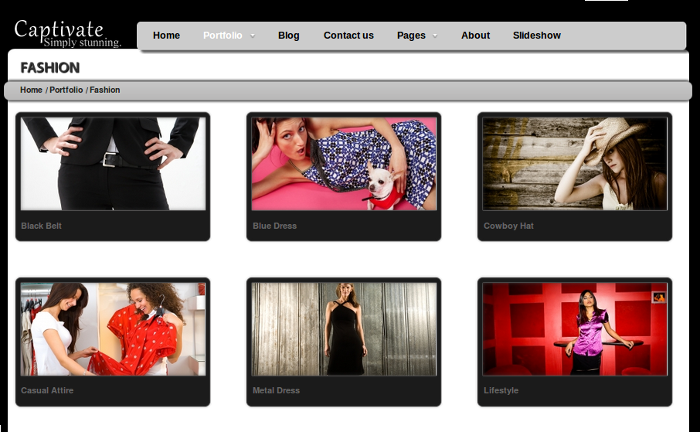 Wordpress-Theme-Gallery-Captivate