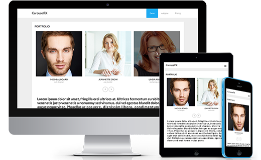 Responsive WordPress Carousel Plugin