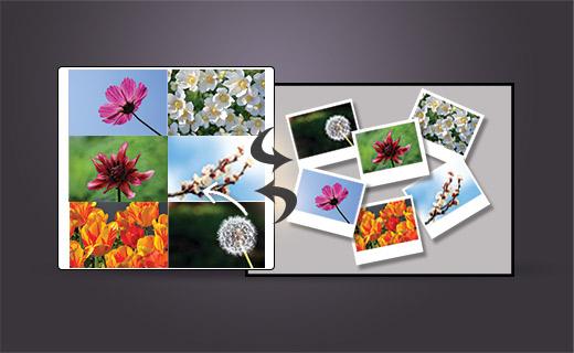 collage maker wordpress plugin