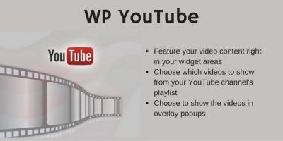 wp-youtube